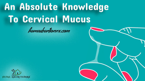 An-Absolute-Knowledge-To-Cervical-Mucus